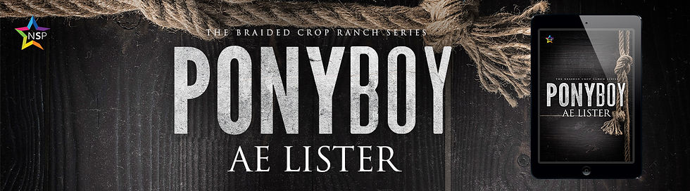 Ponyboy-Slider.jpg