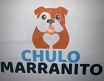 Chulo marranito.jpg