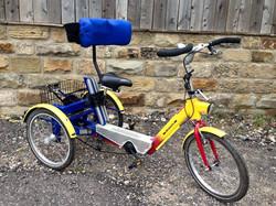 20 wheel trike
