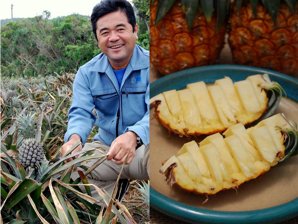 収穫前の一年間は肥料も切らし、小さいけど実のしまった味の濃いパインをとります。池村さん自慢のピーチパイン、是非ご賞味ください。