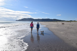 Coastlands Beach - to Whakatane