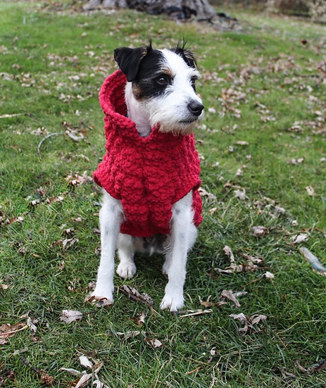 Ruff Pup Cozy Winter Sweater