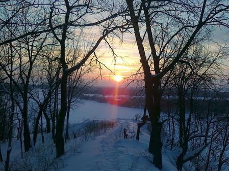 Приглашаем в зимний лес!