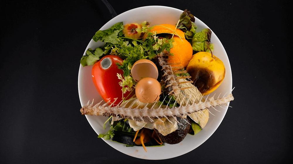 Gestion déchets alimentaires, Egalim, restauration, compostage