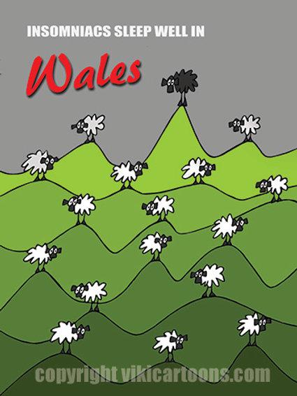 INSOMNIACS SLEEP WELL IN WALES Postcard