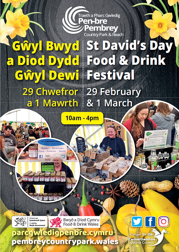st-davids-day-poster.png