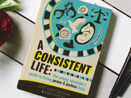 A Consistent Life Book Cover