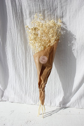 Gypsophile stabilisé blanchi
