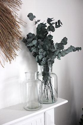 Vase APOTHICA transparent (M-L)