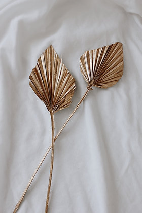 Palm spear GOLD