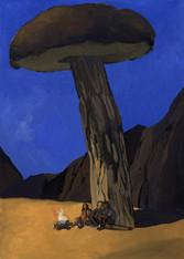 Mushroom Camp