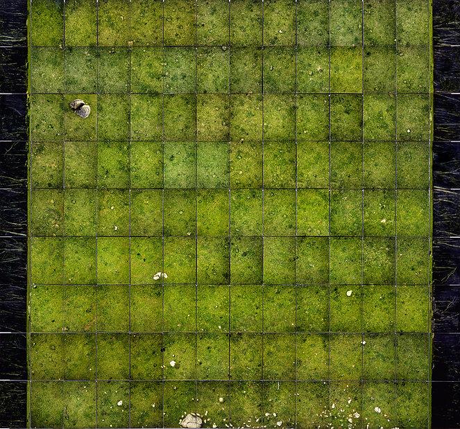david martin, conceptual, landscape, photograph, art
