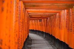 Porta Tradizionale Giapponese