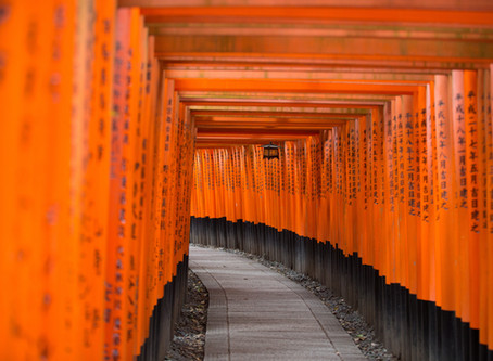 京都から家族連れが来られました!A family came from Kyoto!