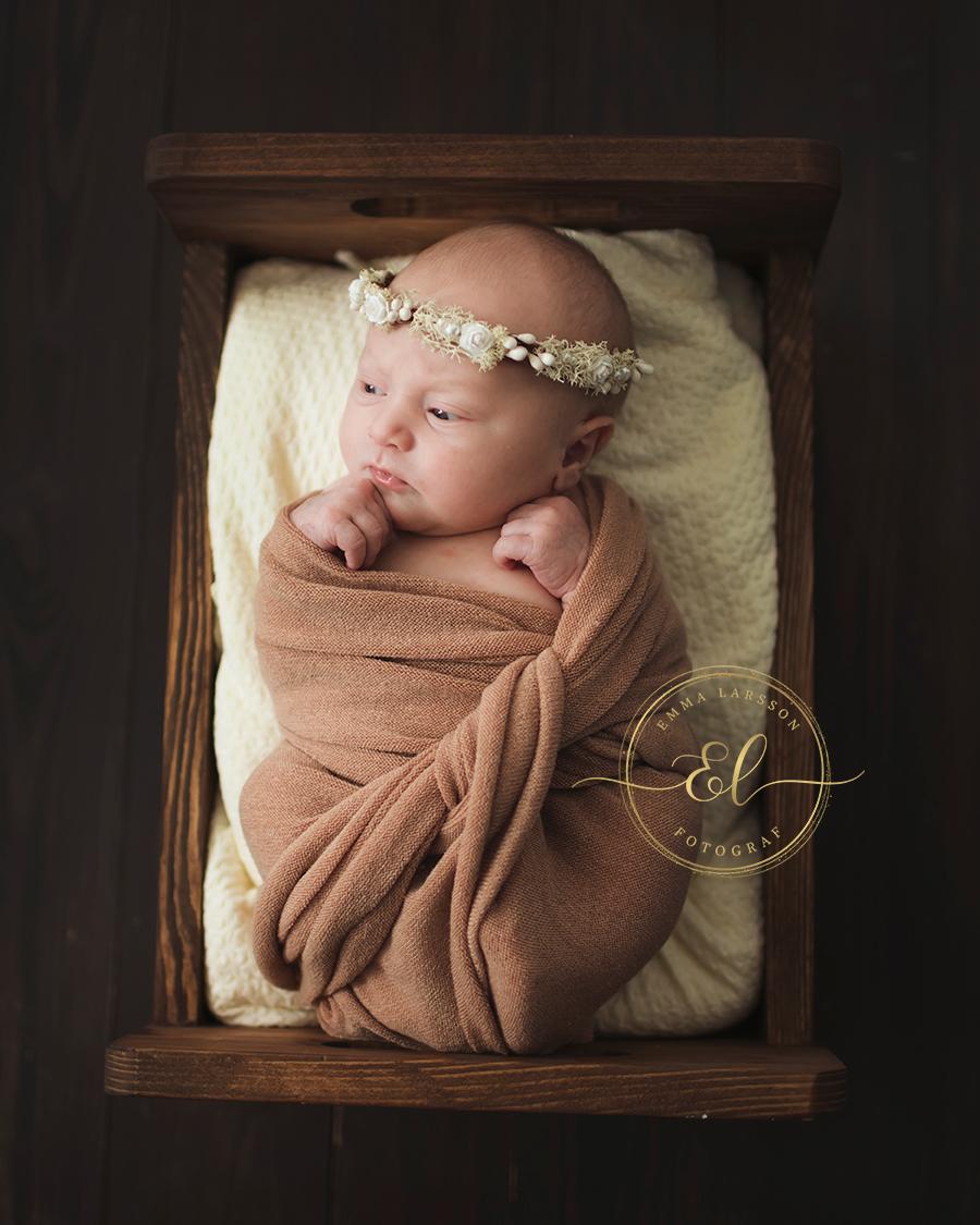 Nyföddfotografering_Timrå