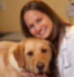 Veterinarian keller, Vet Keller, Veterinary Keller, Animal Hospital Keller, Sick Dog Keller, Sick Cat keller, Animal Clinic Keller, Keller animal, Keller dog doctor, Keller animal doctor, keller pet clinic, Pet hospital keller, animal emergency keller