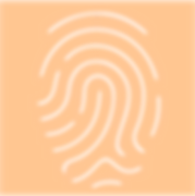 Fingerprint orange box.png