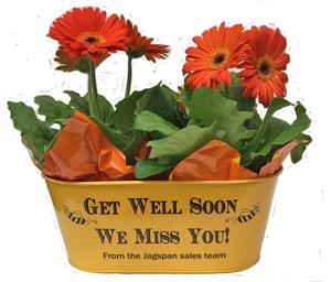 Get Well Planter
