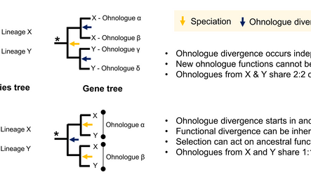 Paper accepted in Genome Biology