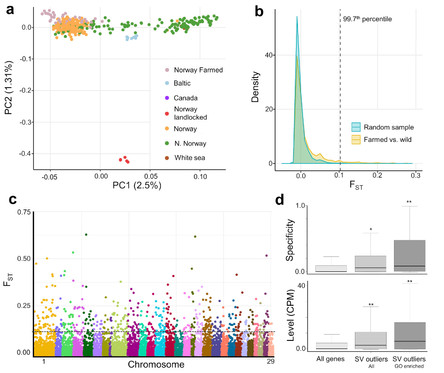 New paper in Nature Communications