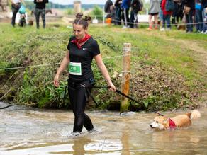 Woof Run 2019 : une course à obstacles !