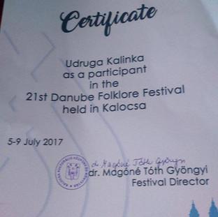 Сертификат об участии в международном фестивале в городе Калоча.