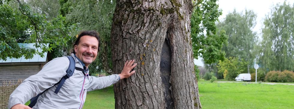Дерево, которое посадил поэт