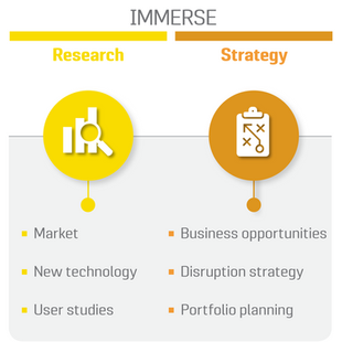 Immerse: Research and Strategy
