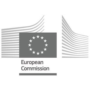 Eye-D is a participant in the EU Research and Innovation program, Horizon 2020