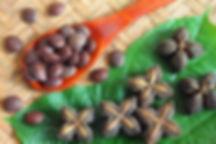 Sacha inchi nut - 4mul8 Organics.jpg