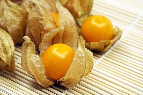 Golden Berries 2 - 4mul8 Organics.jpg