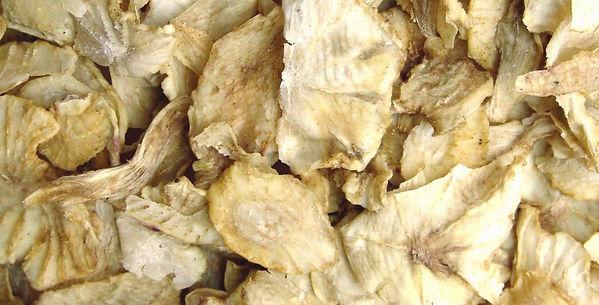 Organic Yacon Flakes - 4mul8 Organics