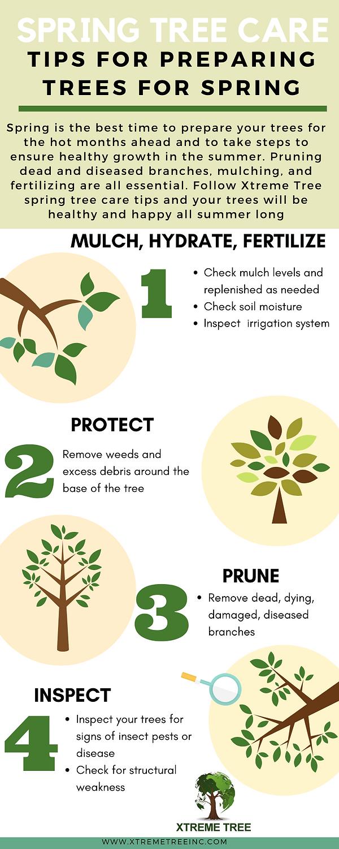 Green Illustration Butterfly Timeline In