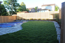 Is an irrigation system right for you? (what you need to know)