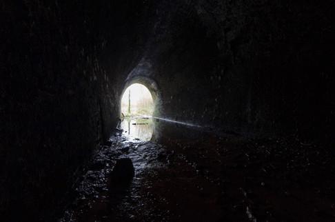 The Grove Tunnel59.jpg