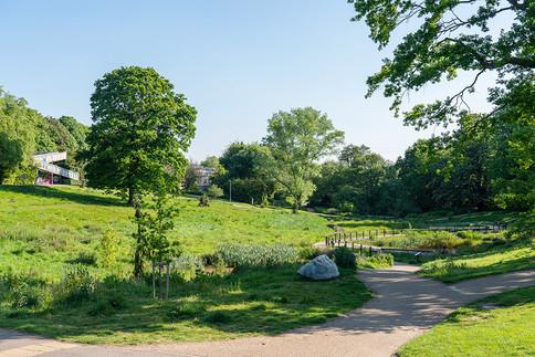 Grosvenor-Park-2019-52.jpg