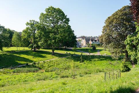 Grosvenor-Park-2019-45.jpg
