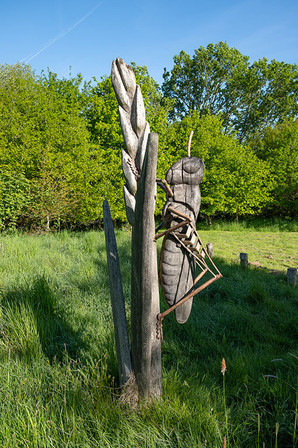 Barnetts-Wood-Nature-Reserve-12.jpg