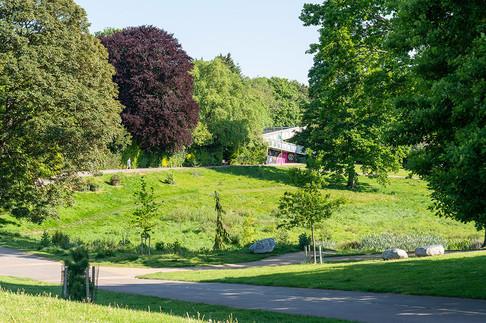 Grosvenor-Park-2019-71.jpg