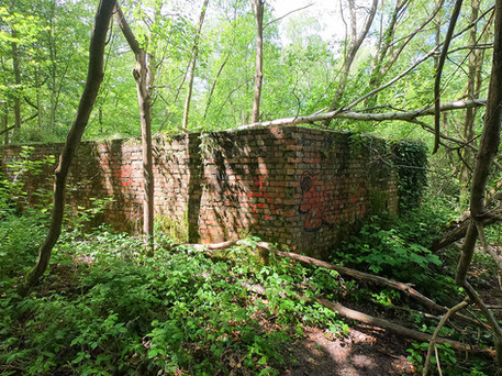 Hargate Forest Tunnels-02.jpg