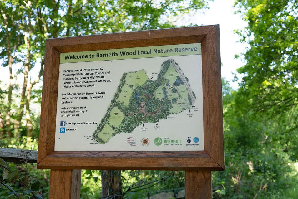 Barnetts-Wood-Nature-Reserve-22.jpg