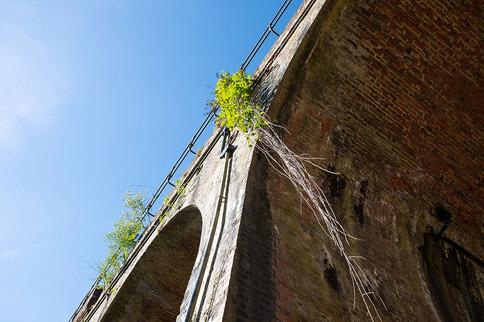 Powdermill-Viaduct-34.jpg