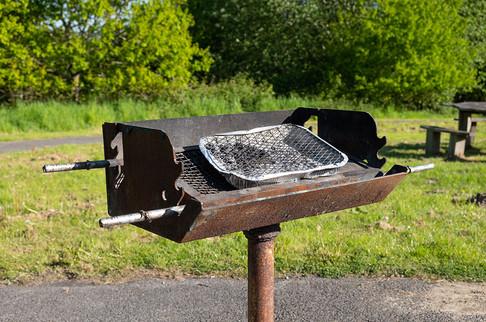 Barnetts-Wood-Nature-Reserve-09.jpg