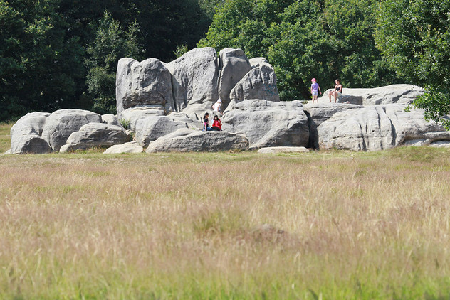 Wellington-Rocks04.jpg
