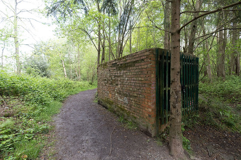 Hargate Forest Tunnels-09.jpg