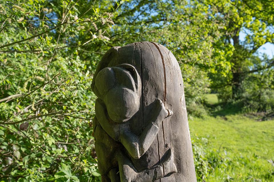 Barnetts-Wood-Nature-Reserve-21.jpg