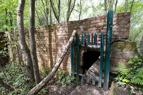 Hargate Forest Tunnels-08.jpg