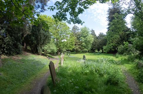 Woodbury-Park-24.jpg