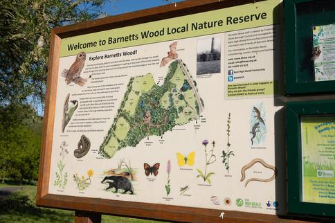 Barnetts-Wood-Nature-Reserve-01.jpg