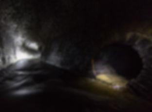 Friezland-Woods-Tunnel-Gallery.jpg
